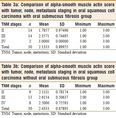 Immunohistochemical analysis of tumor-associated stroma in